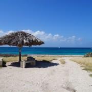 Palm_Beachsmall